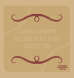 ornament ilustration vector image