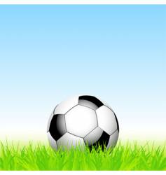 football and grass vector image