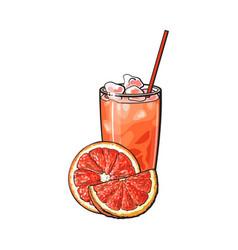 grapefruit half slice glass of juice with ice vector image
