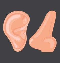 Human ear nose vector