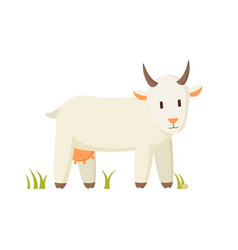nanny goat standing on grass cartoon character vector image