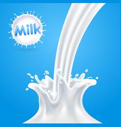 splashes milk vector image