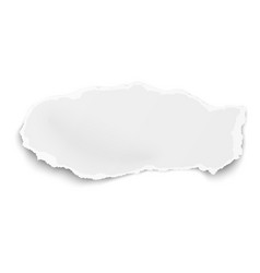 tattered elongated paper tear with soft shadow vector image