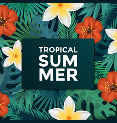 tropical poster 4 vector image
