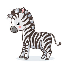 Zebra is standing on a white background vector