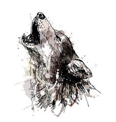 Colored hand drawing of a howling wolf vector