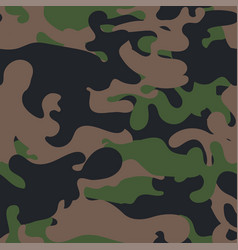 seamless camouflage pattern military fabric vector image
