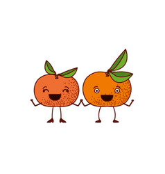 white background with pair of tangerine fruits vector image vector image