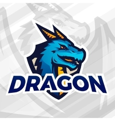 Dragon on shield sport mascot Football or vector