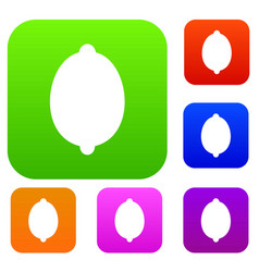 lemon set collection vector image