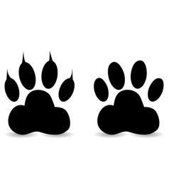 paw print set vector image