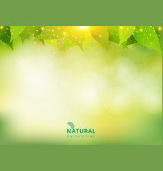 spring summer natural green background with vector image