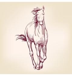 horse hand drawn llustration sketch vector image