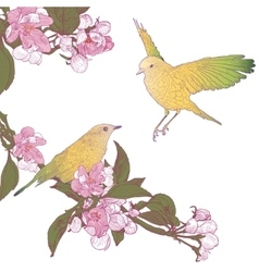 Twigs of Blooming Apple Tree and Two Birds Sitting vector image