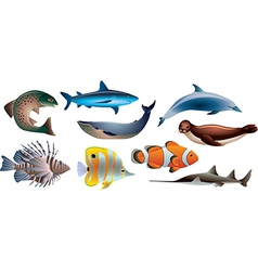 water animals vector image vector image