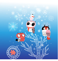 greeting card christmas with funny owls vector image