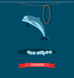 dolphin show in flat style vector image