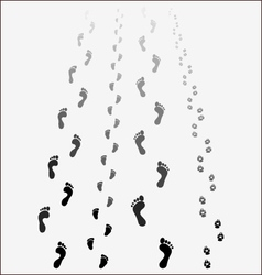 Black footprints vector