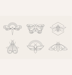 bohemian linear logos icons and symbols insect vector image