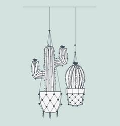 Cactus houseplants in macrame hangers vector