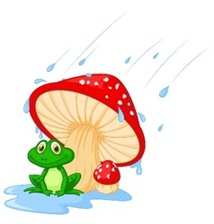 Cartoon mushroom with a toad vector image