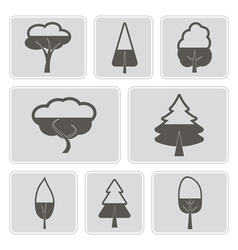 monochrome icons with trees vector image