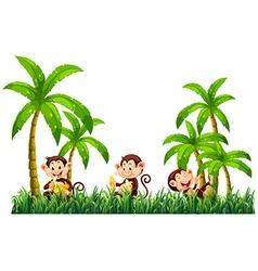 Three monkeys eating bananas vector