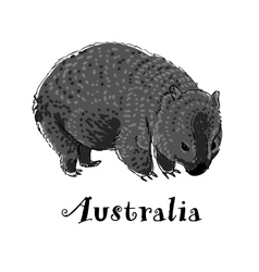 Wombat icon in doodle style Logotype for business vector image