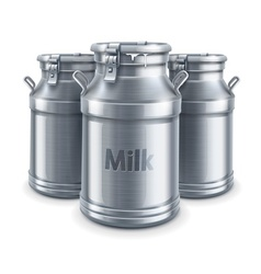 can containers for milk vector image vector image