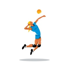 Volleyball player sign vector image