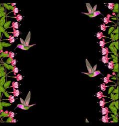 Fuchsia and hummingbird seamless border vector