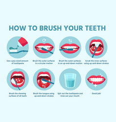 how to brush teeth oral hygiene correct tooth vector image