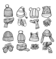 knitting cap and scarf vector image