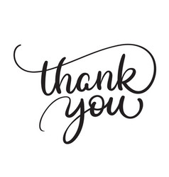 thank you text on white background calligraphy vector image