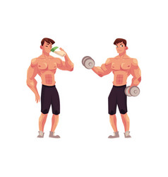 man bodybuilder working out with dumbbells and vector image