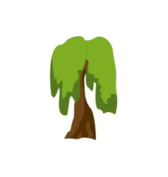 stylized green tree cartoon vector image vector image