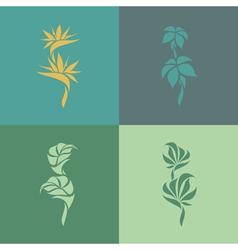 Tropical plants Set of design elements vector image