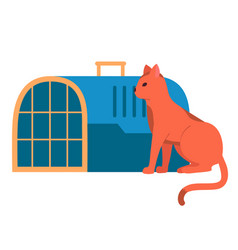 A red cat sits near an animal veterinary cage vector