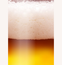 beer background for flyer poster banner vector image