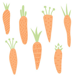 Carrots set vector