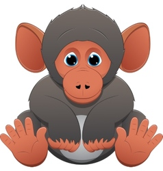 cute baby monkey vector image