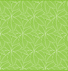 Green leaves pattern seamless background for vector