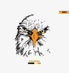 Hand-drawing eagle eyes vector