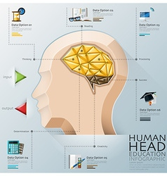 Human Head With Brain Three Dimension Polygon vector image