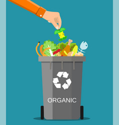 Man hand throws garbage into a organic container vector