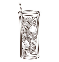 mojito cocktail in glass isolated sketch lime vector image
