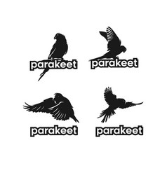 parakeet bird set silhouette vector image