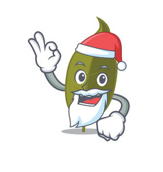 Santa bay leaf mascot cartoon vector