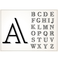 a light and elegant display font lines equal vector image
