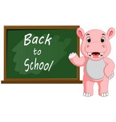 Cartoon hippo wrote chalk on a blackboard vector